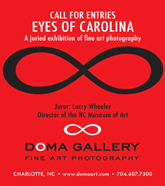 DOMA Gallery Call for Entries