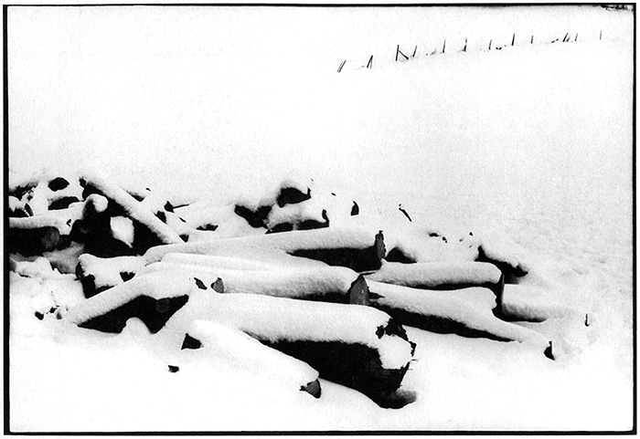 Peter Simon, A late winter snow..., Mass., 1970, Photograph